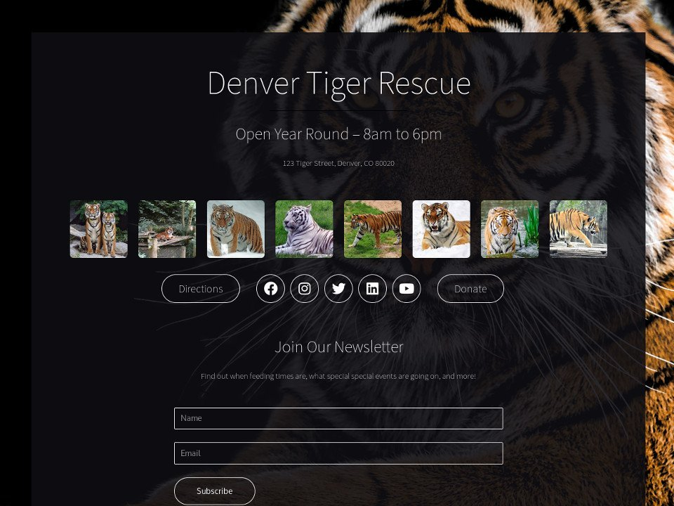 Denver Tiger Rescue