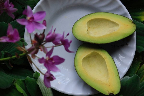 10 Amazing Facts About Avocados