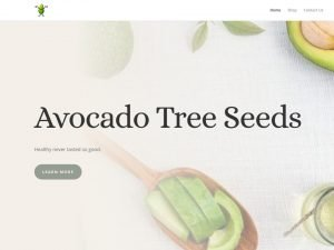 Avococado Tree Seeds Website